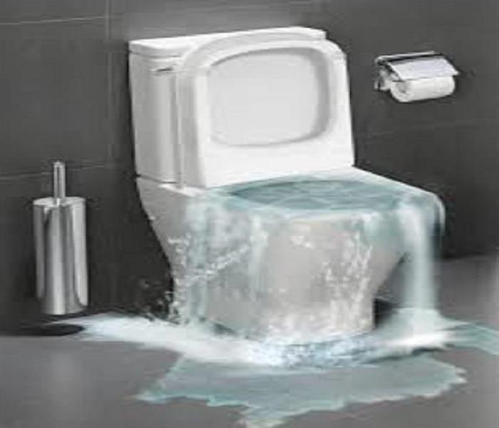 Water Damage The Rising Waters: Toilet Overflow and What To Do About It
